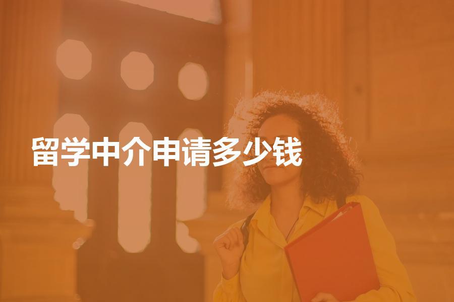 留学中介帮忙申请需要多少钱?自己申请会更划算吗?