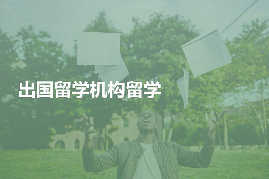 有必要找留学机构帮忙申请出国留学吗?什么情况适合自己申请?